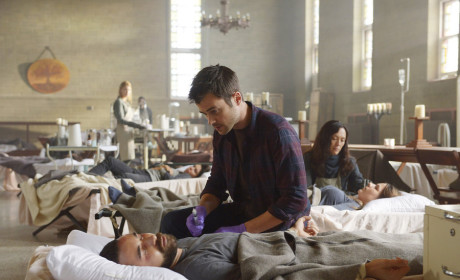 Helix Season 2 Episode 6 Review: M. Domestica