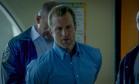 Hawaii Five-0 Season 5 Episode 18 Review: Justice for All