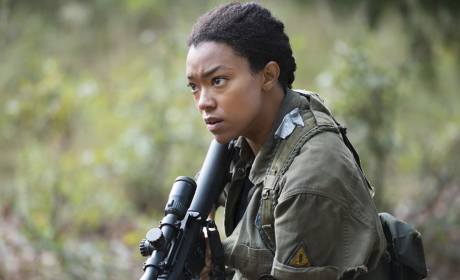 The Walking Dead Season 5 Episode 13 Review: Is This Real?