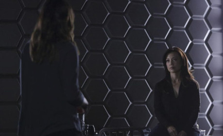 Listen Up Skye - Agents of S.H.I.E.L.D. Season 2 Episode 13