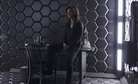 May Visits Her Ex - Agents of S.H.I.E.L.D. Season 2 Episode 13