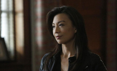 Finally, A Smile - Agents of S.H.I.E.L.D. Season 2 Episode 13