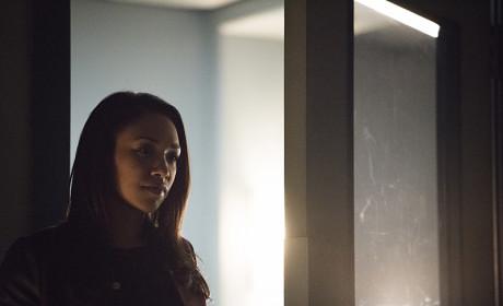 Visiting - The Flash Season 1 Episode 20