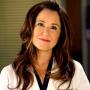 Mary McDonnell Talks Grey's Anatomy