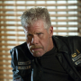 Sons of Anarchy Season 4 Spoilers: SAMCRO vs. SAMTAZ