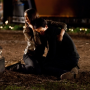 "The Vampire Diaries Season Three to ""Define"" Elena and Damon"