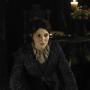 Catelyn Stark Pic