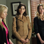 The Good Wife Review: Courting Blondes
