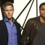 USA Network Status Updates: Common Law, Necessary Roughness, Fairly Legal