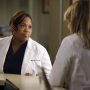 Grey's Anatomy Episode Preview: Who's Under Investigation?