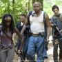 Walking Dead Foursome