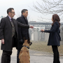 Person of Interest Review: Fairly Lethal