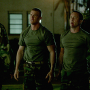 Hawaii Five-0 Review: Honey Buzzards