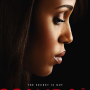 Scandal Season 3 Poster: A Secret Spilled