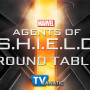 "Agents of SHIELD Round Table: ""Girl in the Flower Dress"""