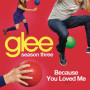 Glee cast because you loved me