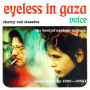 Eyeless-in-gaza-veil-like-calm