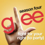 Glee-cast-fight-for-your-right-to-party