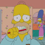 Homer Brushing
