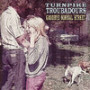 Turnpike-troubadours-blue-star