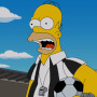 Homer the Referee
