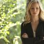 Caroline Dries Teases The Vampire Diaries Season 6: Where is Home?