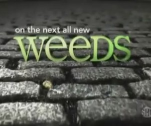 Weeds Promo & Clips: No Lesson Learned?