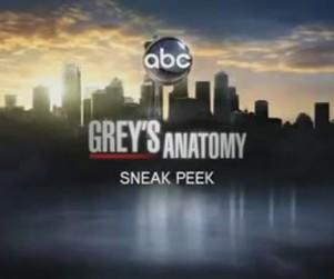 Grey's Anatomy Season Premiere Sneak Peek: What Have I Done?