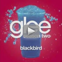 Glee Cast - Blackbird