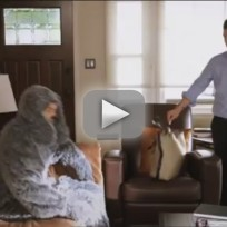 Wilfred-preview