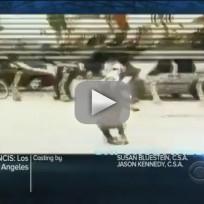 NCIS: Los Angeles 'Deadline' Promo