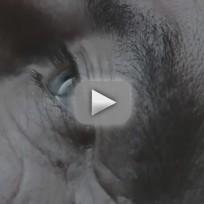 Awake-preview