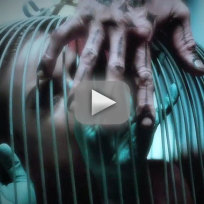 American-horror-show-freak-show-teaser-caged