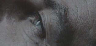 Awake preview
