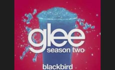 Glee Cast - Blackbird