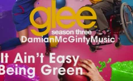 Damian McGinty - It's Not Easy Being Green