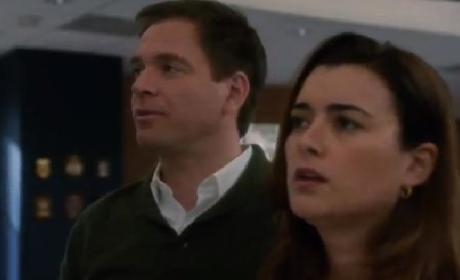 NCIS Sneak Peek: Where's McGee?