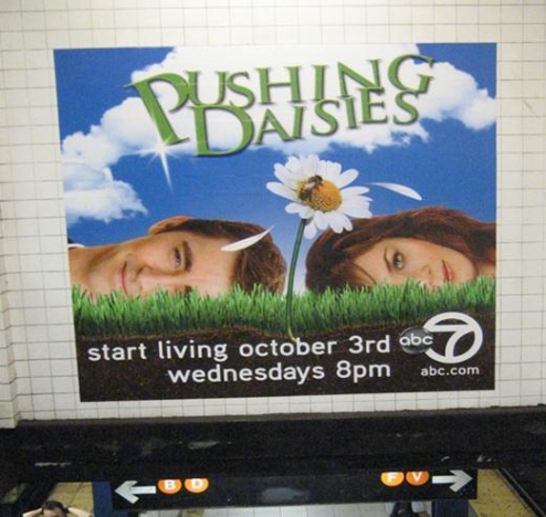 Pushing Daisies Ad