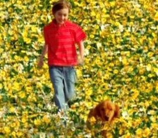 Young Ned and Digby