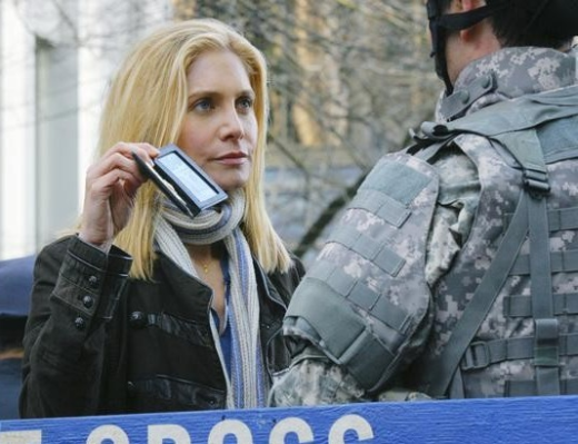Elizabeth Mitchell as Erica Evans