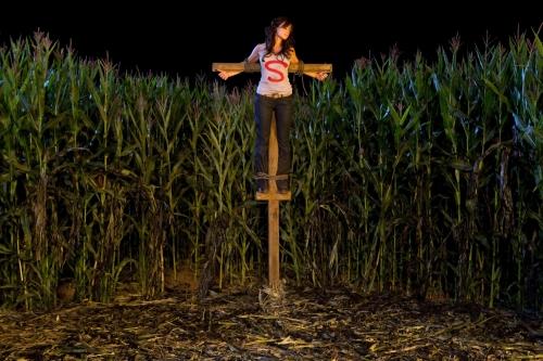 Smallville Premiere Image