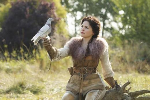 Bird Holding