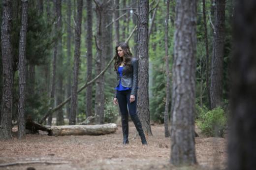 K in Woods
