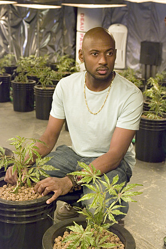 Romany Malco on Weeds